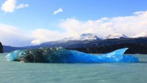 Walvis ijsschots