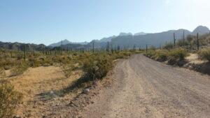 Ajo mountain drive