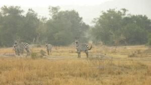 Lake Mburu